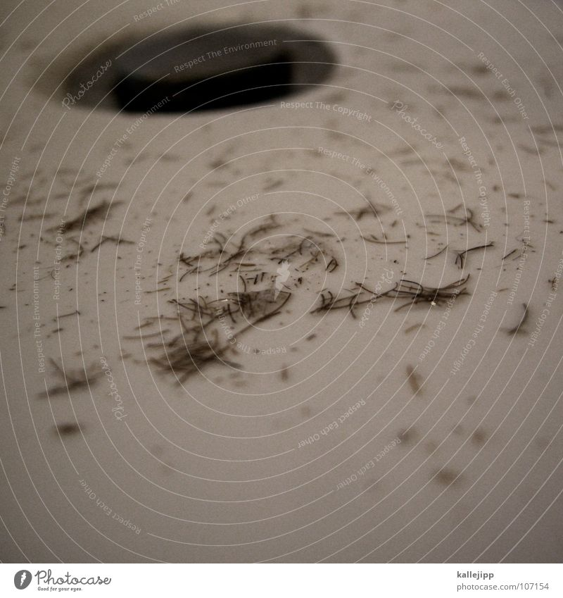 http://www.photocase.de/de/photodetail.asp?i=107062 Mann weiß Arbeit & Erwerbstätigkeit maskulin Bad Spuren Toilette Bart Glätte Schaum geschnitten Abfluss