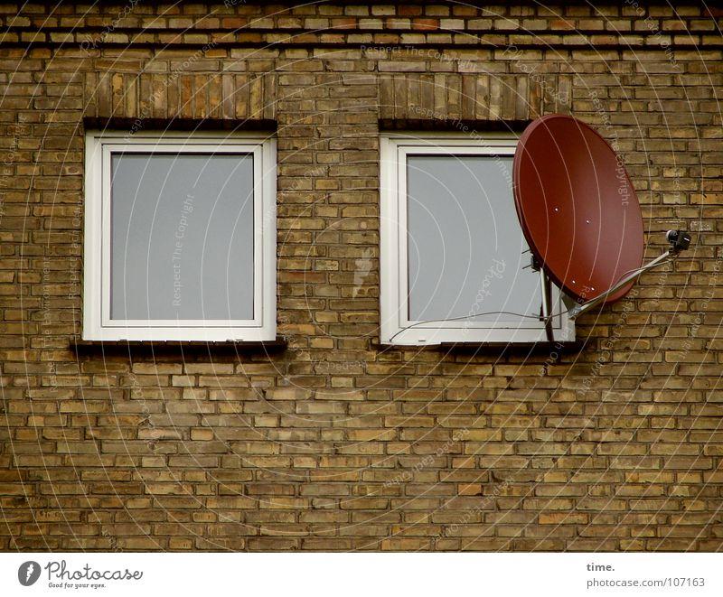 Bürger, lass das Glotzen sein... [II] Haus Fenster Wand Mauer Stein Idylle trist Suche Umzug (Wohnungswechsel) Balkon Fernsehen Backstein Langeweile Schalen & Schüsseln Verschiedenheit Entertainment