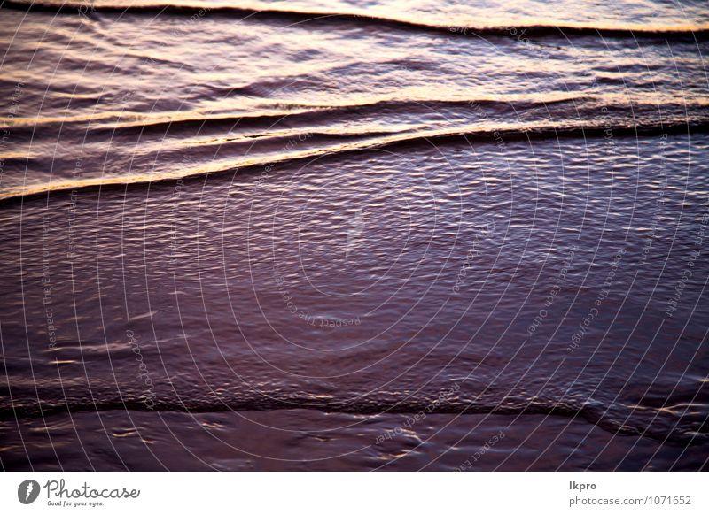 Natur Ferien & Urlaub & Reisen Farbe Wasser Sommer Strand schwarz gelb Küste Freiheit Stein braun Sand Felsen dreckig elegant