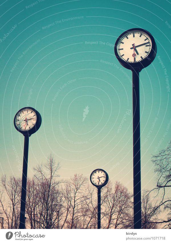 Uhren im Uhrenpark in Düsseldorf, Zeit Zifferblatt Pünktlichkeit Zeitmagement Zeitumstellung lebenszeit Frühling Herbst altern Winter Baum Park Sekundenzeiger