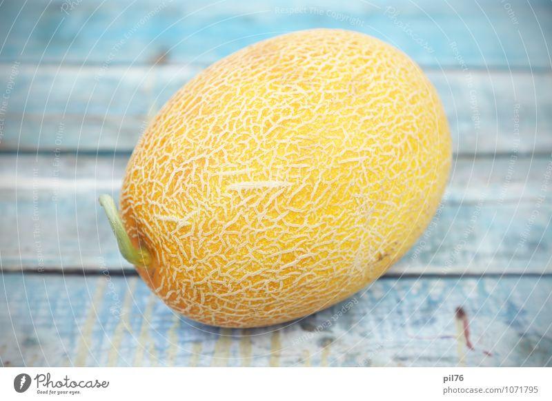 Natur alt weiß gelb Frucht Beautyfotografie Erfrischung Dessert saftig Vegetarische Ernährung Konsistenz Objektfotografie Feinschmecker Melonen Portion