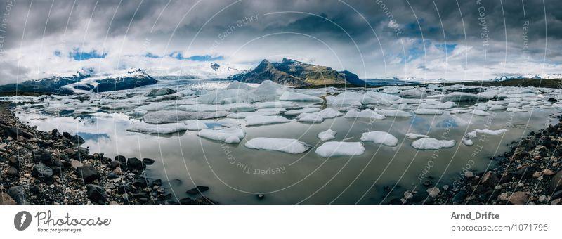 Island Gletschersee Jökulsárlón Himmel Ferien & Urlaub & Reisen Wasser Landschaft Wolken Tier Ferne Umwelt Berge u. Gebirge Schnee Küste außergewöhnlich See
