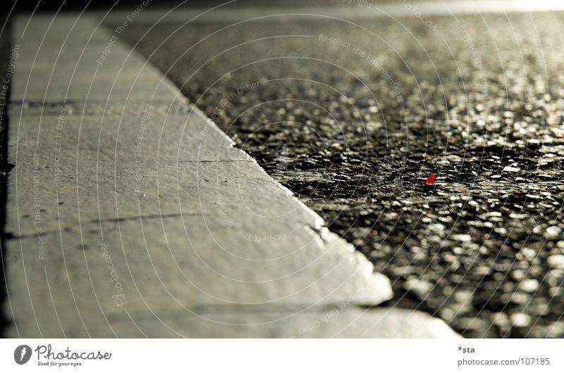 take a close look to the ground rot Straße Linie klein Erde nah Bodenbelag Asphalt Streifen Verkehrswege Scherbe Splitter Granulat Fahrbahnmarkierung