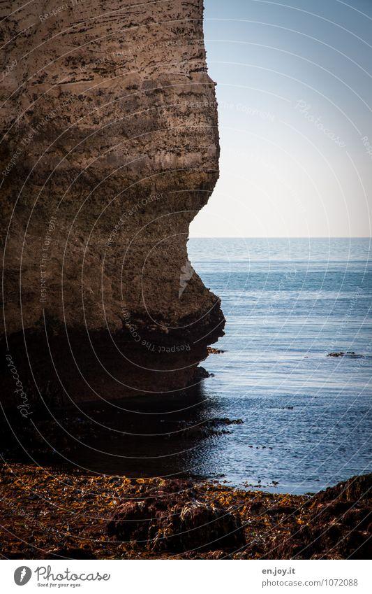 Tauchen ohne nass zu werden Abenteuer Ferne Freiheit Meer Umwelt Natur Landschaft Wasser Wolkenloser Himmel Horizont Klima Algen Wasserpflanze Felsen Küste blau