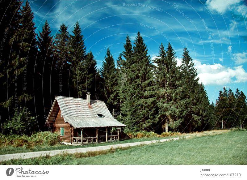 Waldhütte für Waldhüter Himmel grün blau Ferien & Urlaub & Reisen ruhig Haus Einsamkeit Wald Erholung Wiese Gras Holz Wege & Pfade klein Idylle Tanne
