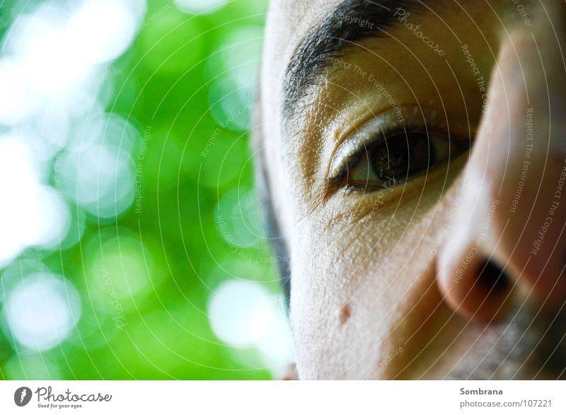 Augenblick Natur grün Gesicht Zufriedenheit maskulin frei Kraft weich Frieden Vertrauen Leichtigkeit Überraschung Leberfleck Unbeschwertheit beruhigend