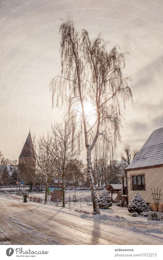 Dorf Natur Himmel Winter Schönes Wetter Eis Frost Schnee Lambrechtshagen Mecklenburg-Vorpommern Europa Bundesadler Menschenleer Kirche Zufriedenheit Glaube