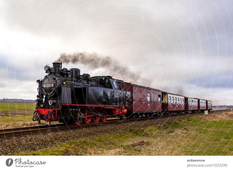 Doberaner Molli Ferien & Urlaub & Reisen Eisenbahn fahren Gleise Lokomotive Bahnfahren Schienenverkehr Personenzug Dampflokomotive Kühlungsborn Schmalspurbahn