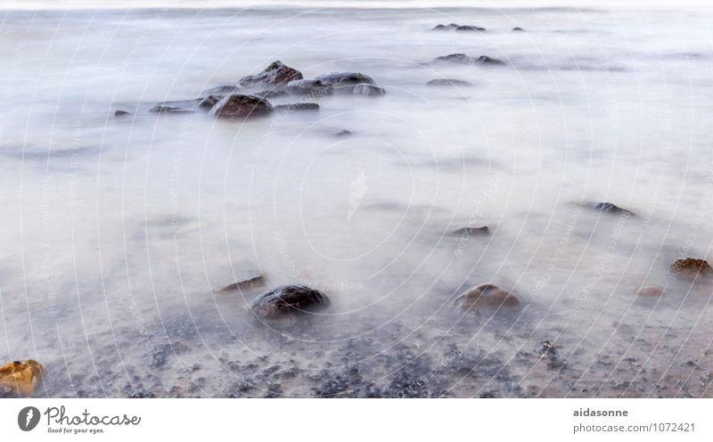 Ostseestrand Natur Landschaft Wasser Felsen Küste Zufriedenheit Sehnsucht Fernweh Mecklenburg-Vorpommern Europa Deutschland Heiligendamm Rostock Farbfoto