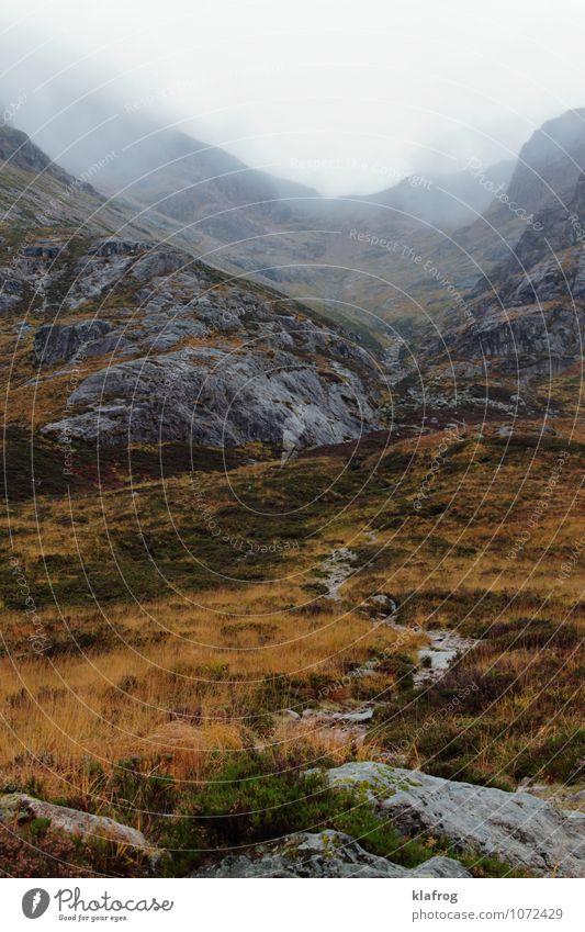 Glen ins Ungewisse Ferien & Urlaub & Reisen Insel Berge u. Gebirge Schottland Highlands Landschaft Pflanze Wolken schlechtes Wetter Unwetter Nebel Regen