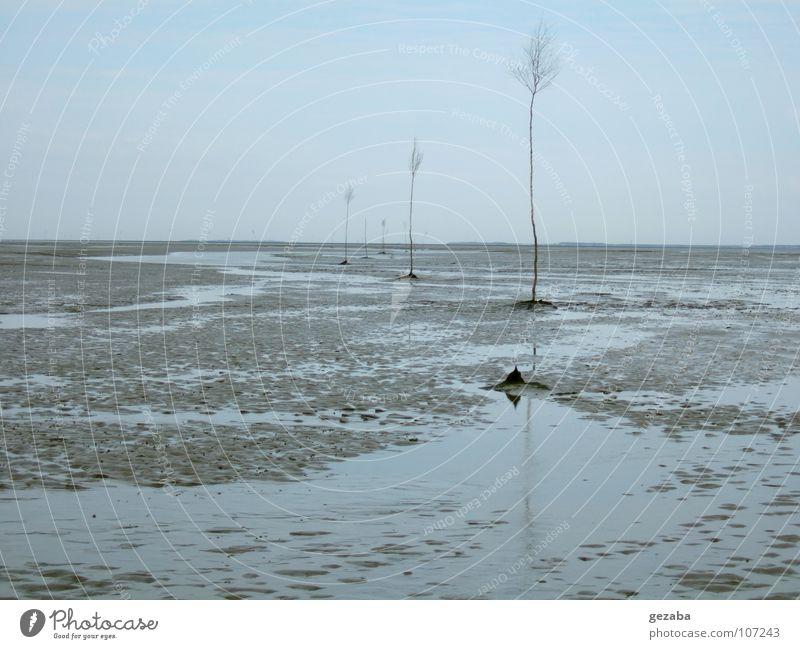 Watt und Schiffsweg bei Ebbe Himmel Baum Meer Strand Ferien & Urlaub & Reisen ruhig Wolken Einsamkeit Erholung Herbst Wege & Pfade See Sand Landschaft Küste