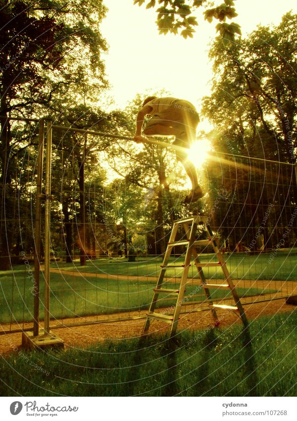 Einmal Luftlinie, bitte! I Mensch Mann Natur grün Sonne Einsamkeit Wald Wiese Wand oben Junge Wege & Pfade Garten springen Park Arbeit & Erwerbstätigkeit
