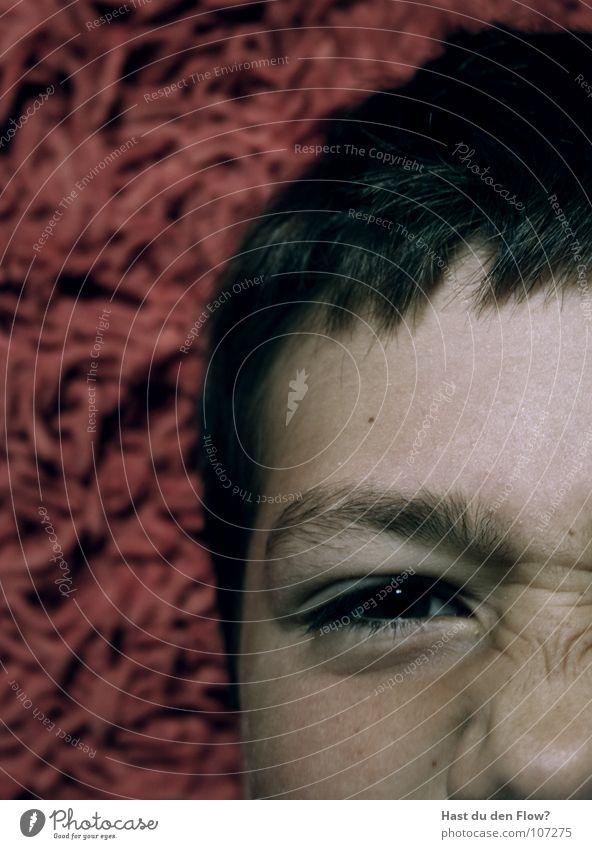 grr böse süß rot Kurzhaarschnitt braunes Auge Wimpern Augenbraue weiß Nasensekret klein beleidigt Kind Junge young boy little red skin Haut Haare & Frisuren