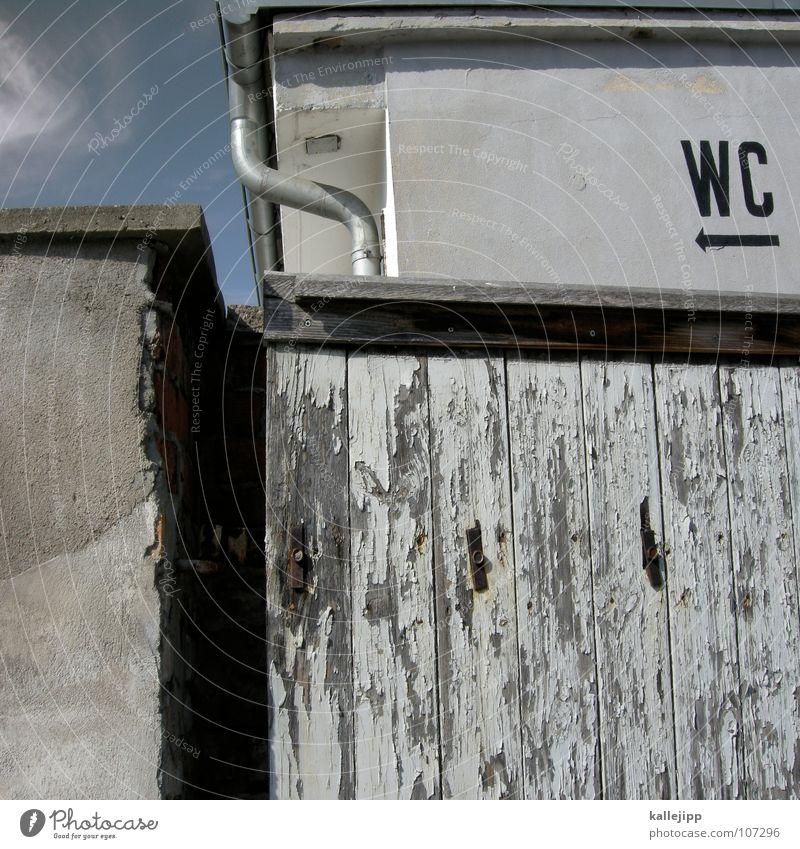 sagrotan Bad Kot Pfeil Toilette Toilette Richtung Geruch Abwasser Ausscheidungen Übelriechend Pups Desinfektion Harndrang