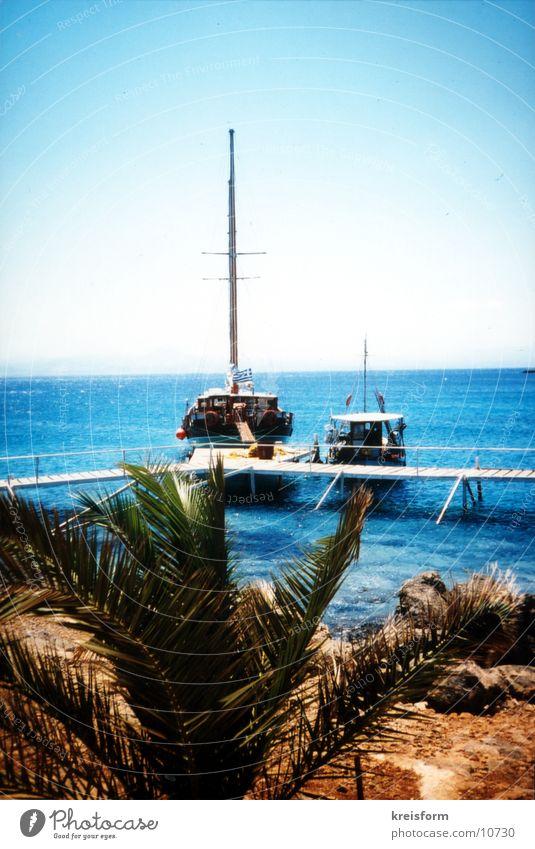 orthogonal zum Horizont Meer Strand Ferien & Urlaub & Reisen Wasserfahrzeug Palme