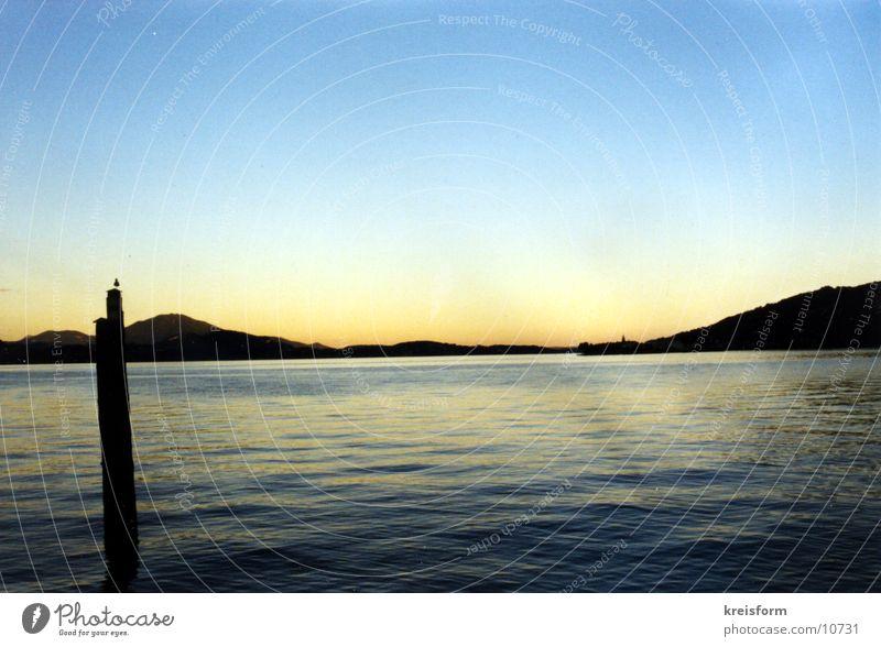 einsame Möwe Wasser See Landschaft Horizont