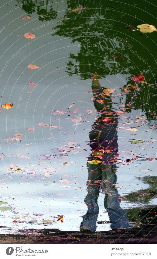 Victory Mensch Wasser Freude Blatt Herbst Freiheit Denken Zufriedenheit Wellen nass Erfolg stehen Körperhaltung Brunnen Teich Pfütze