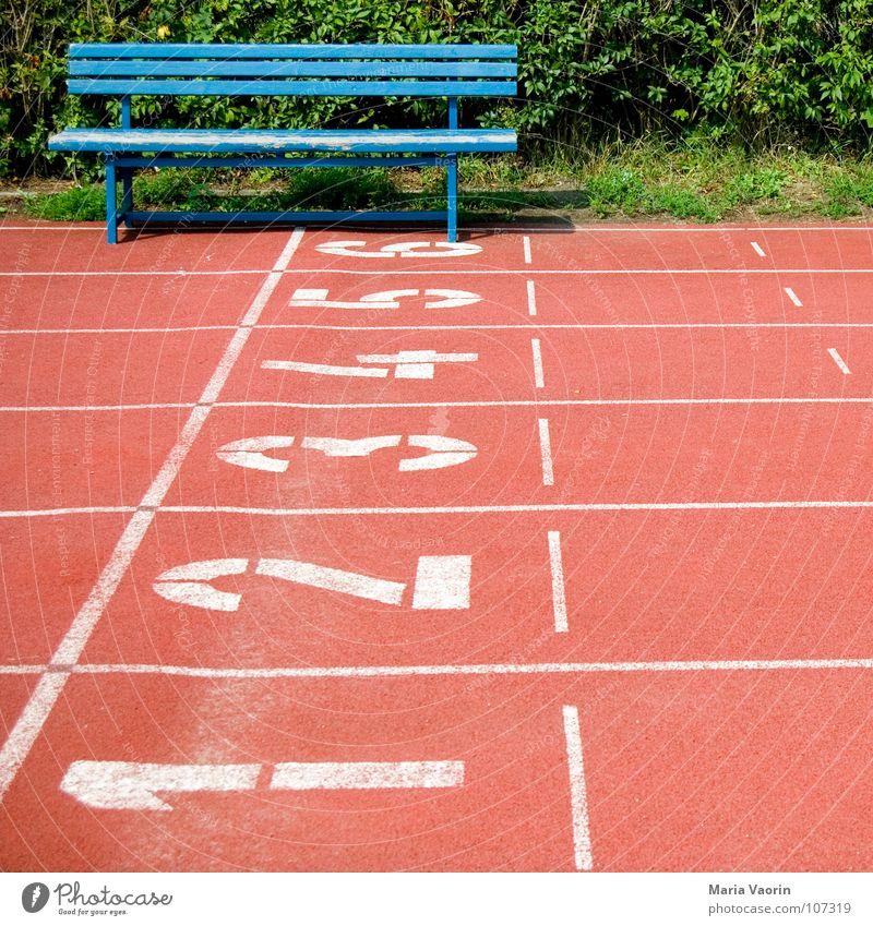 3...2...1... ausruhen Sportplatz verloren Erfolg Sportveranstaltung Niederlage verlieren Pause Erholung Blick Publikum Ziffern & Zahlen Hecke 100 Meter Lauf