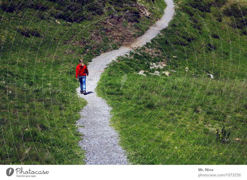 auf halber strecke Ferien & Urlaub & Reisen Tourismus Ausflug Ferne wandern feminin Umwelt Natur Landschaft Gras Sträucher Hügel Berge u. Gebirge Wege & Pfade