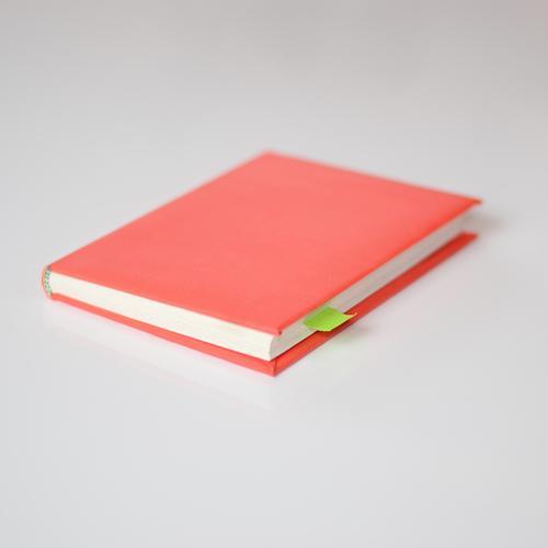 Lieblingsstelle grün weiß rot sprechen Schule Büro Ordnung Buch Studium lernen Papier planen lesen Bildung schreiben Kontakt