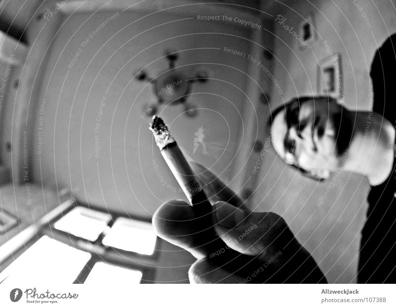 Life as an ashtray Aschenbecher Rauchen ungesund Rauchen verboten Nikotin Teer Kondenswasser Gastronomie Tisch Froschperspektive Fischauge Zigarette Mann Herr