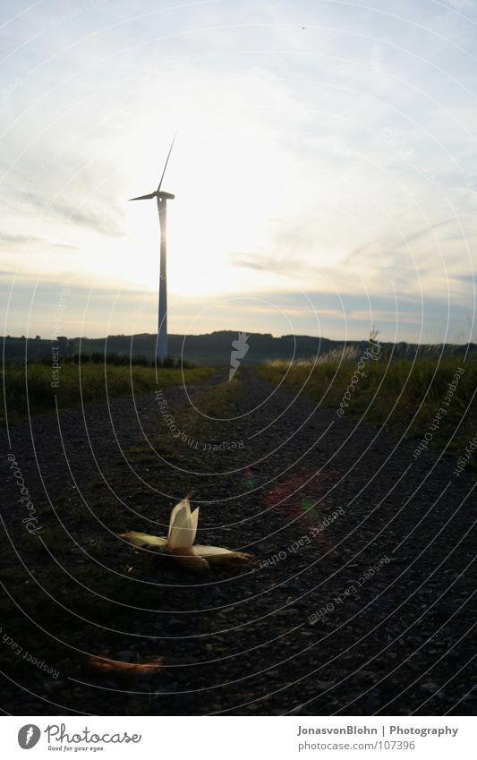 Windrad Natur Herbst Stein Wege & Pfade Rasen Windkraftanlage Mais