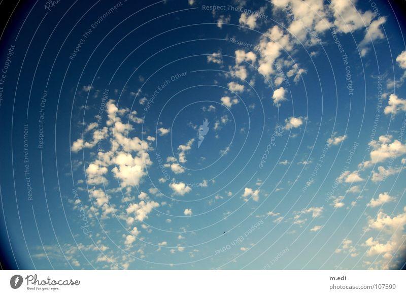 Schäfchen zählen Himmel blau Wolken himmelblau Lamm Kumulus Altokumulus floccus Tunnelblick