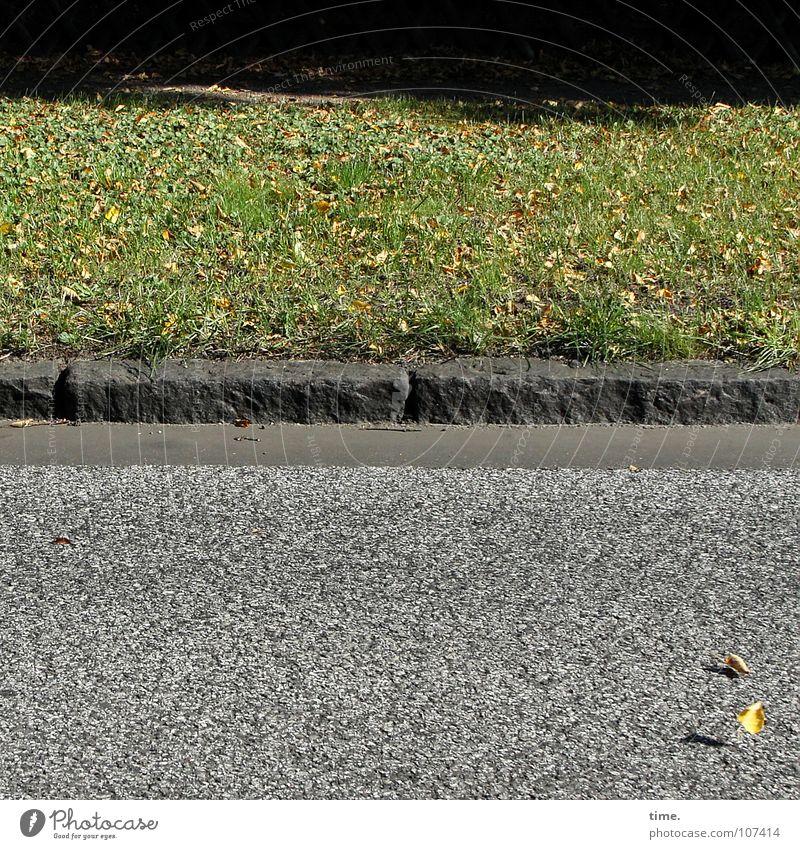 HerbstBlätterTanz hat begonnen Schatten Tanzen Wind Blatt Verkehrswege Straße Stein Bewegung Asphalt Bordsteinkante 2 Windspiel Rasen Treppenabsatz Bodenbelag