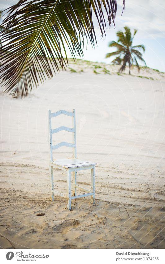 Platz im Paradies Meditation Ferien & Urlaub & Reisen Abenteuer Ferne Sommerurlaub Strand Meer Landschaft Himmel Schönes Wetter Einsamkeit Energie entdecken