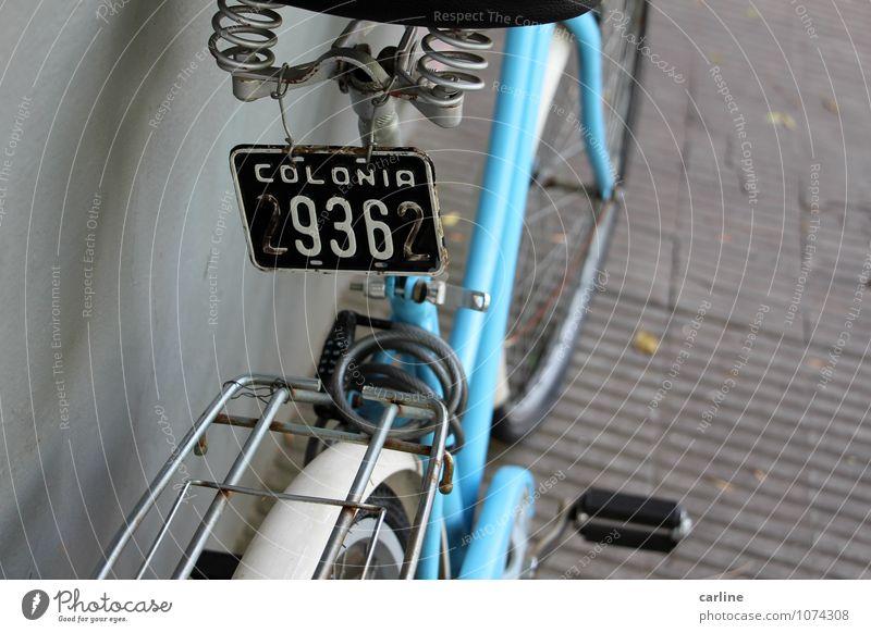 Andar en bici II Freizeit & Hobby Ferien & Urlaub & Reisen Tourismus Ausflug Abenteuer Ferne Freiheit Sightseeing Städtereise Fahrradtour Sommer Sommerurlaub