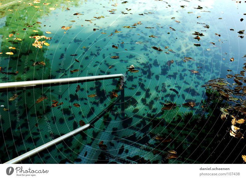neulich im Freibad Wasser grün blau Blatt Herbst Tod Stimmung dreckig Hintergrundbild leer Trauer Treppe Schwimmbad Ende Vergänglichkeit Klarheit