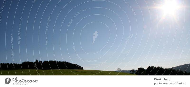 Heimatlied 2 Himmel Baum grün blau schwarz Wald Wiese Gras Landschaft Aussicht Tanne Weide Zaun Fichte Sauerland