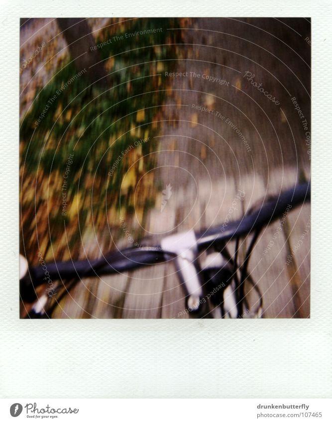 vorm Sturz... Fahrrad schwarz fahren Blatt Gras Baum Herbst gelb grün braun Fahrradlenker Bremse Metall silber Kopfsteinpflaster Wege & Pfade Straße Stein