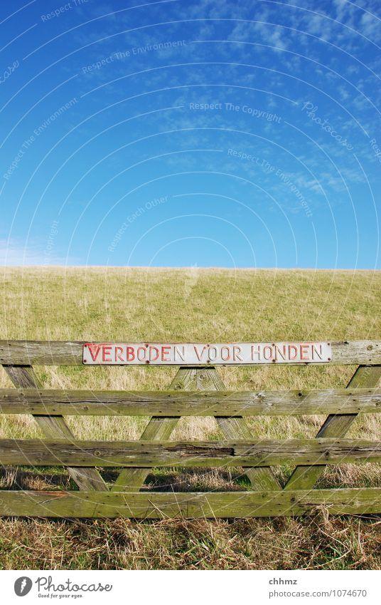VERBODEN VOOR HONDEN Hund Himmel blau grün Sommer Wolken Wiese Gras Küste Holz Horizont Schilder & Markierungen Hinweisschild Zaun Barriere Nordsee