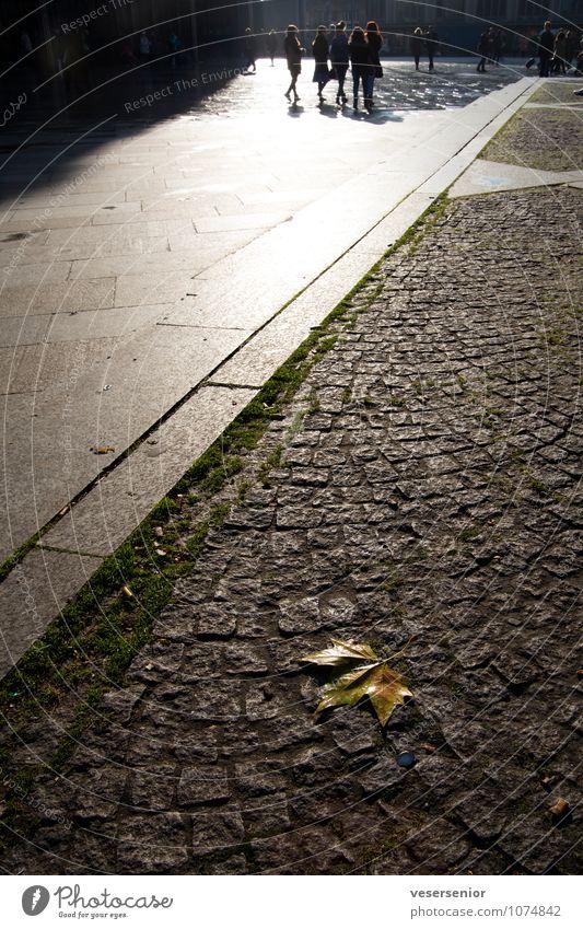 wo bleibt denn hier der strassenkehrer? Mensch Stadt Einsamkeit Blatt Tod Menschengruppe einzigartig Vergänglichkeit Sauberkeit Hoffnung Glaube Stadtzentrum Altstadt Straßenbelag Köln Reinlichkeit