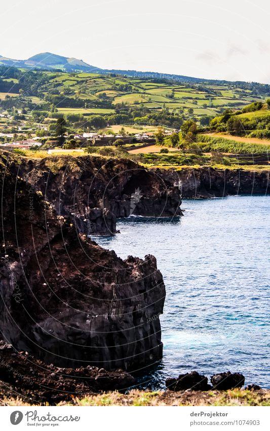 Vulkaninsel São Miguel Natur Ferien & Urlaub & Reisen Pflanze Sommer Meer Landschaft Freude Tier Ferne Berge u. Gebirge Umwelt Gefühle Wiese Küste Freiheit Felsen