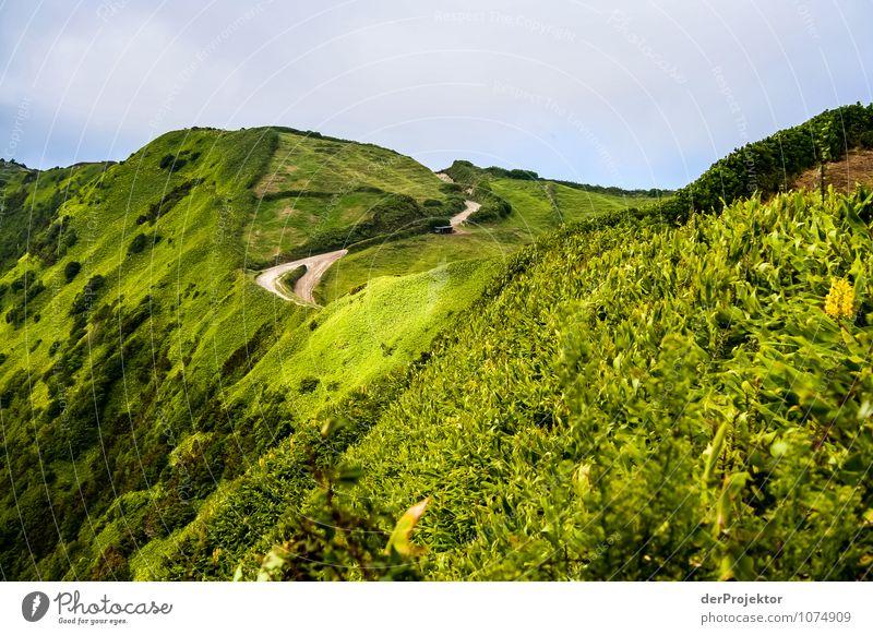 Grüner Hügel, brauner Weg Ferien & Urlaub & Reisen Tourismus Ausflug Abenteuer Expedition Berge u. Gebirge Umwelt Natur Landschaft Pflanze Urelemente Sommer