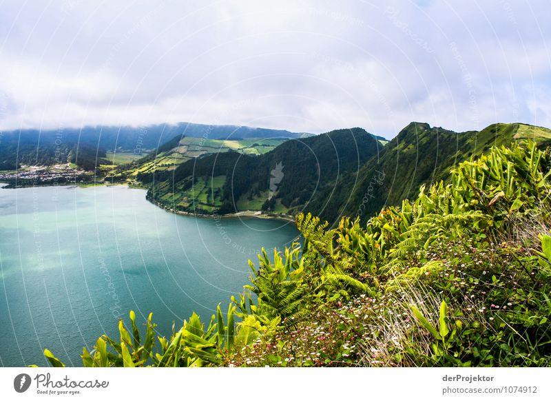 Kraterkamm auf Sao Miguel Natur Ferien & Urlaub & Reisen Pflanze Sommer Meer Landschaft Tier Ferne Berge u. Gebirge Umwelt Wiese Freiheit See Felsen Tourismus Sträucher
