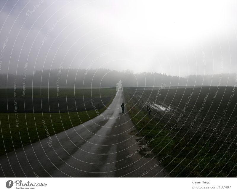 Felder im Nebel ruhig Herbst Wege & Pfade Spaziergang ungewiss