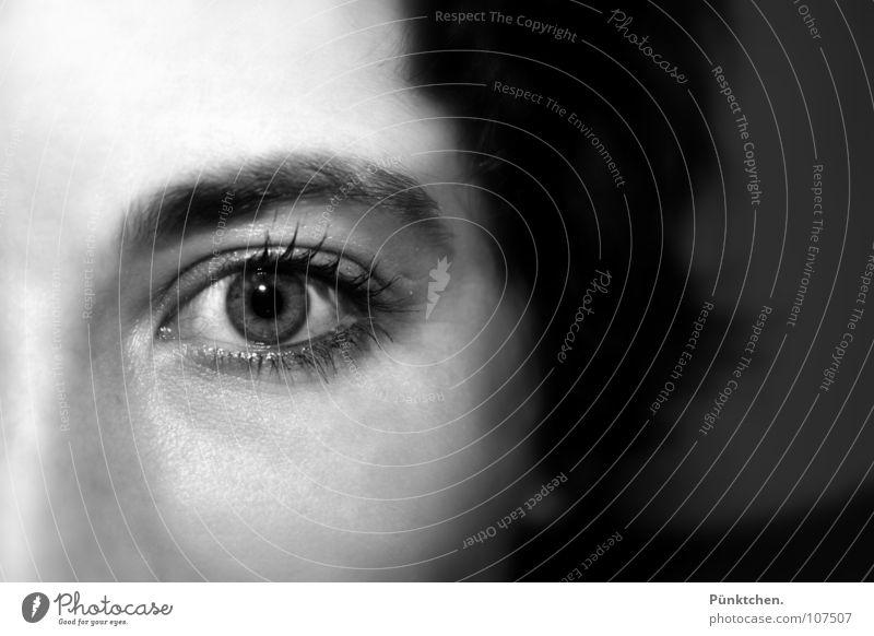 Tiefseh Wimpern Pupille Augenbraue nah Unschärfe Frau Sehvermögen Blick Wimperntusche Reflexion & Spiegelung Gesicht Haare & Frisuren Focus Mensch Zoomeffekt