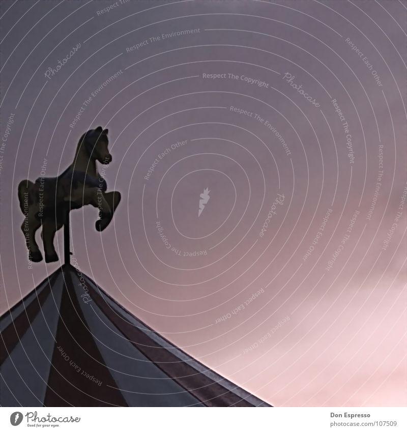Karussellgaul Himmel Freude Wolken Feste & Feiern Ausflug Pferd Aktion Freizeit & Hobby Kindheit Jahrmarkt Zirkus Buden u. Stände Esel Kiosk Wochenende