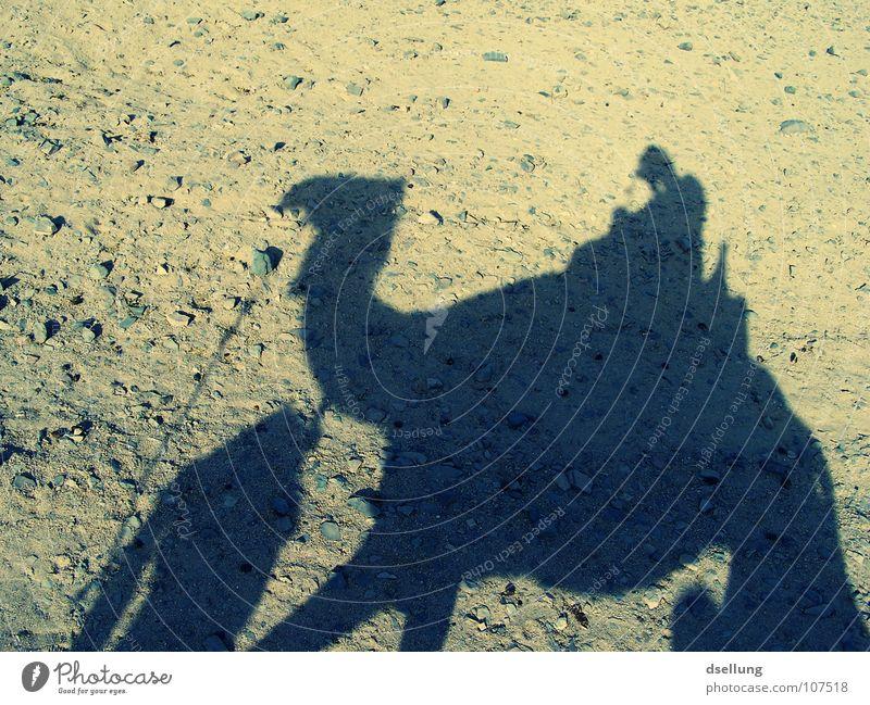 Neulich bei den Beduinen Mensch Mann blau Sommer Sonne schwarz gelb dunkel Berge u. Gebirge Wärme grau Sand Stein hell braun Felsen