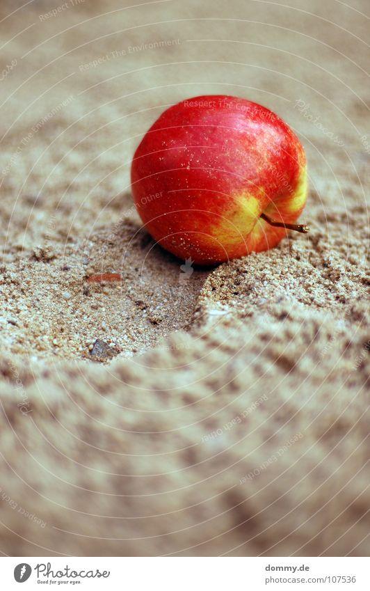 der apfel fällt ... rot grün klein Makroaufnahme rund Spuren Tiefenschärfe lecker Schornstein Ernährung Sandkasten Spielplatz Spielen Frucht Apfel Stein Rolle