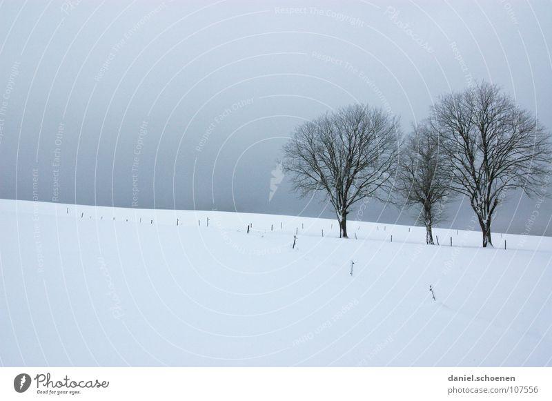 Weihnachtskarte 4 Himmel Natur blau weiß Baum Ferien & Urlaub & Reisen Winter Einsamkeit kalt Schnee Horizont Deutschland Hintergrundbild Nebel Freizeit & Hobby