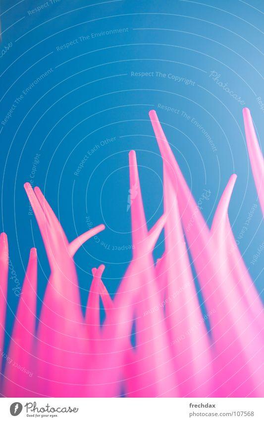 drink pink rosa magenta Froschperspektive Stroh Gras Wiese Trinkhalm groß Sommer Sommertag Indian Summer schön Mittag Caipirinha Mojito Rum klein Hochmut