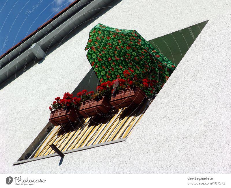 Balkonien weiß Blume grün rot Sommer Ferien & Urlaub & Reisen frei Dach Freizeit & Hobby Sonnenschirm Geländer Wetterschutz Sonntag Sommerurlaub Loggia