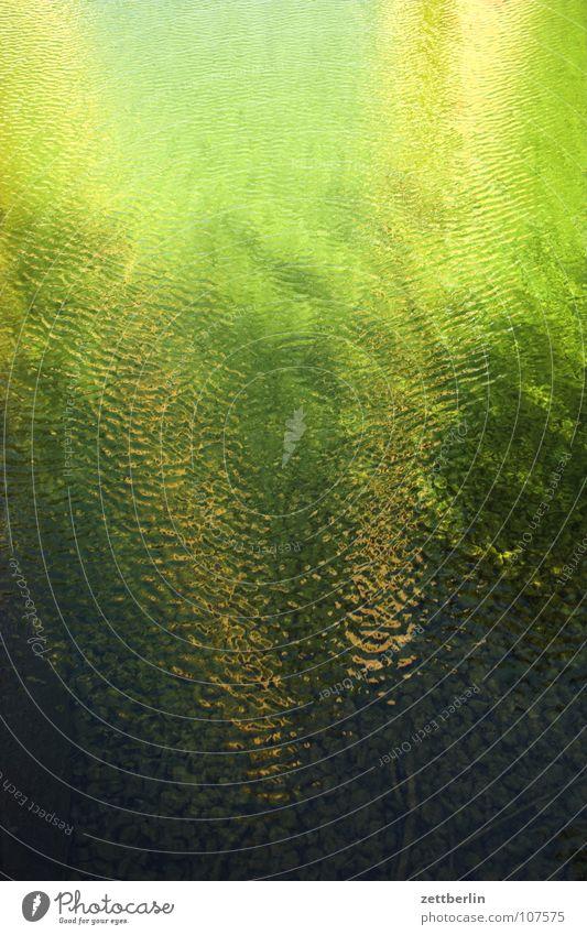 Potsdamer Platz Wasseroberfläche Oberfläche Reflexion & Spiegelung Bruch Binnensee Teich Wasserbecken Algen Flüssigkeit überdrüssig Arbeitsloser Sonntag