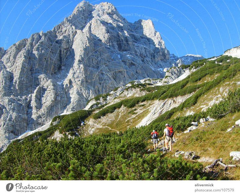 der lange weg zur spitzmauer grün Bergsteiger wandern Fußweg steinig steil Idylle Berge u. Gebirge Felsen Schuhe blau Blauer Himmel totes gebirge anstrengen