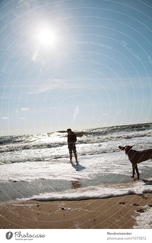 Tia, leg die Ohren an....das Meer läuft aus Hund Mensch Jugendliche Wasser Sommer Sonne Erholung Junger Mann Tier 18-30 Jahre Strand Erwachsene Leben Freiheit