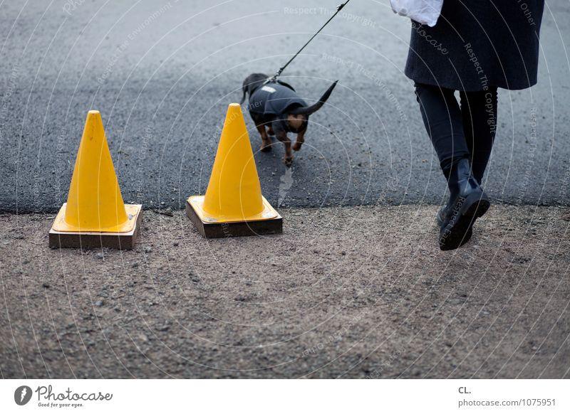 parcours Mensch feminin Frau Erwachsene Leben Beine 1 Verkehrsmittel Verkehrswege Fußgänger Straße Wege & Pfade Tier Haustier Hund Verkehrsleitkegel Hundeleine
